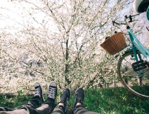 Radeln – Natur pur