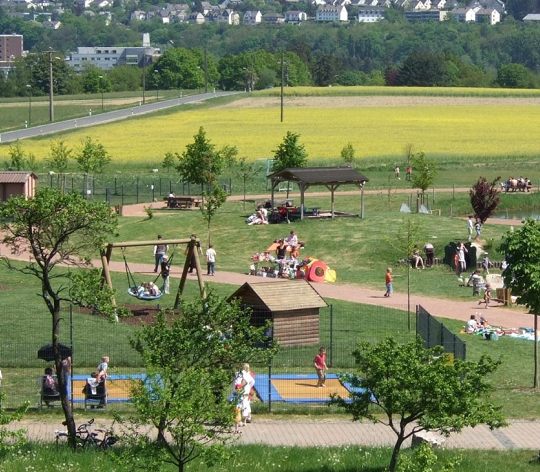 People doing outside activities in a park